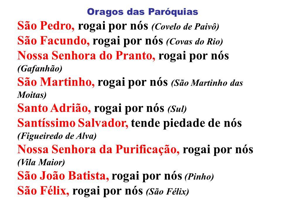 ASSEMBLEIA DE LEIGOS EM S.