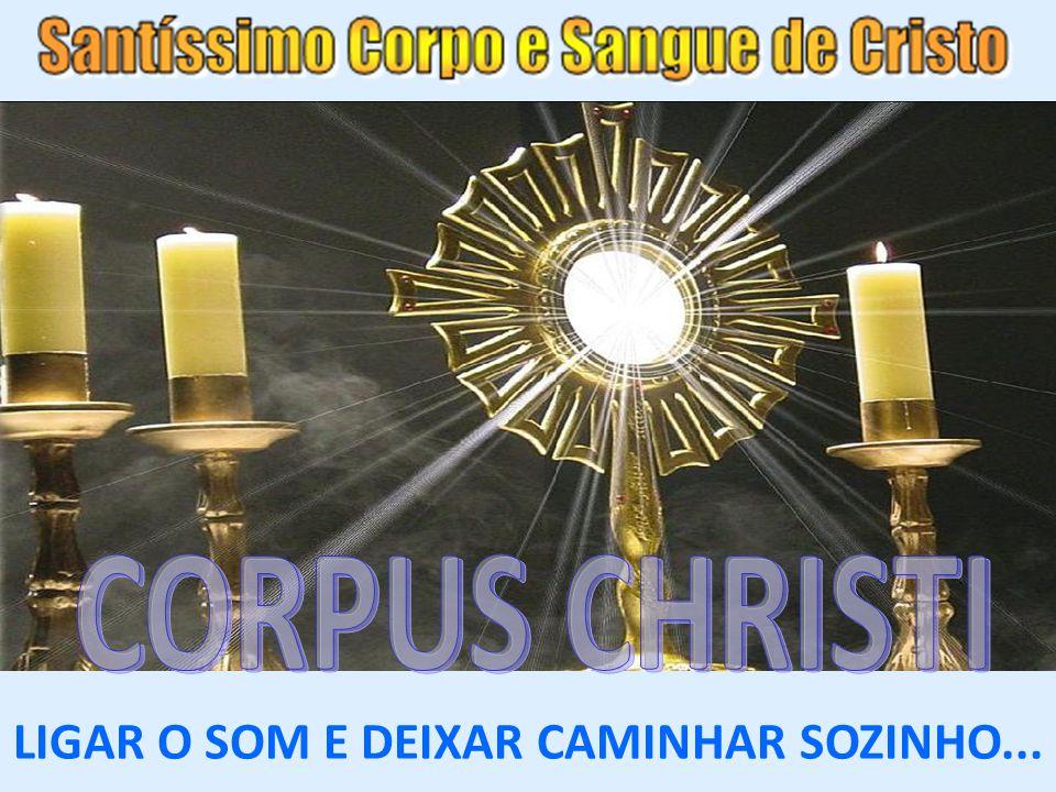 com muito respeito e fé, humildade e todo amor possível a Jesus Eucarístico, em silêncio profundo e clima de oração, alegria, e certeza que o Senhor caminha sempre conosco, pois a