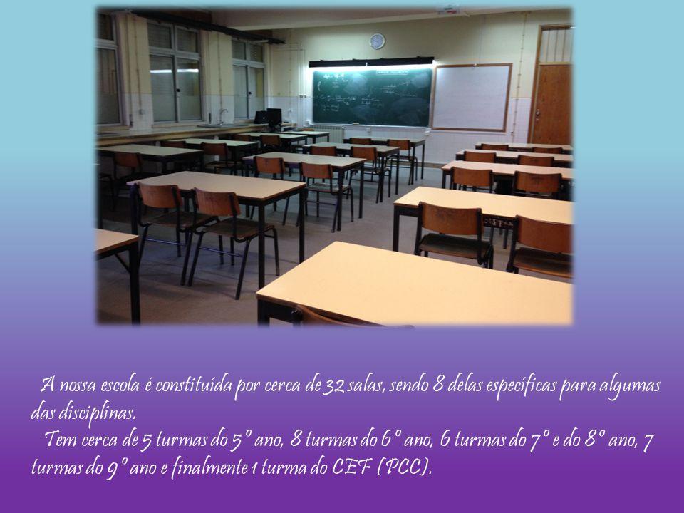 A nossa escola é constituída por cerca de 32 salas, sendo 8 delas específicas para algumas das disciplinas. Tem cerca de 5 turmas do 5º ano, 8 turmas