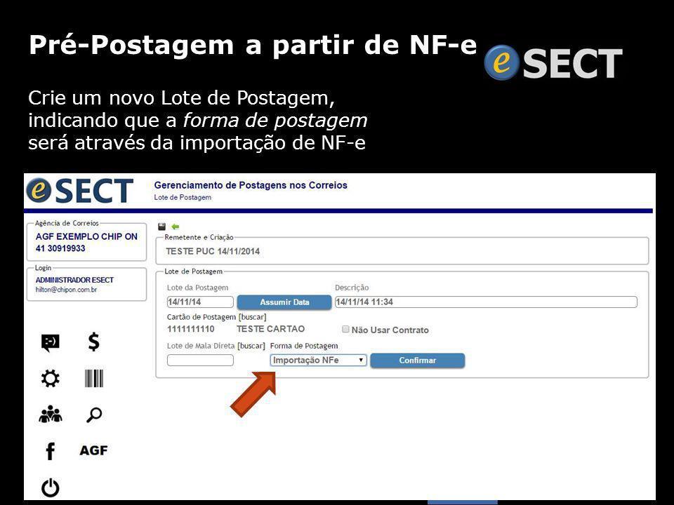 Crie um novo Lote de Postagem, indicando que a forma de postagem será através da importação de NF-e Pré-Postagem a partir de NF-e