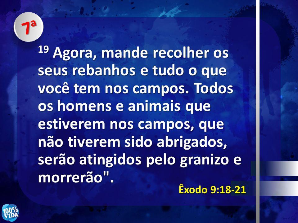 7a7a7a7a Êxodo 9:18-21 19 Agora, mande recolher os seus rebanhos e tudo o que você tem nos campos. Todos os homens e animais que estiverem nos campos,