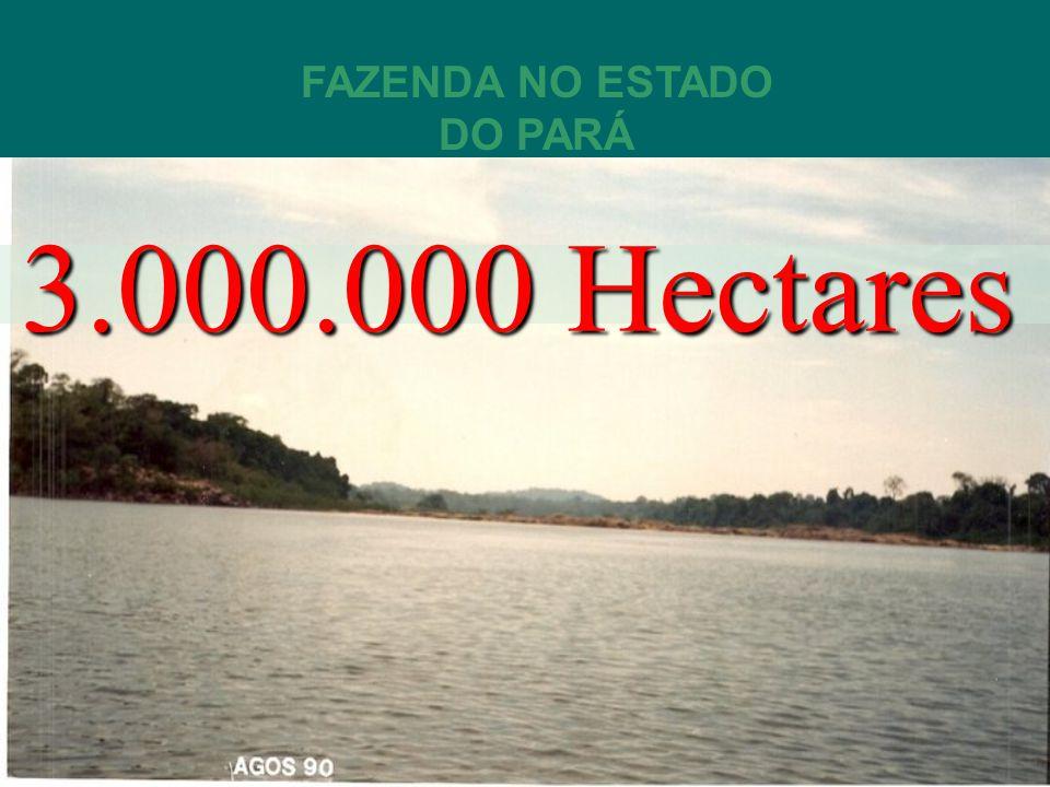 AREA TOTAL 3.000.000 MILHÕES DE HECTARES INFORME TECNICO DE AVALIACÃO DAS AREAS DENOMINADAS: LOCALIZADAS NO MUNICÍPIO DE SÃO FÉLIX DO XINGÚ ESTADO DO PARÁ.