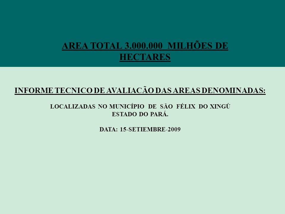 AREA TOTAL 3.000.000 MILHÕES DE HECTARES INFORME TECNICO DE AVALIACÃO DAS AREAS DENOMINADAS: LOCALIZADAS NO MUNICÍPIO DE SÃO FÉLIX DO XINGÚ ESTADO DO