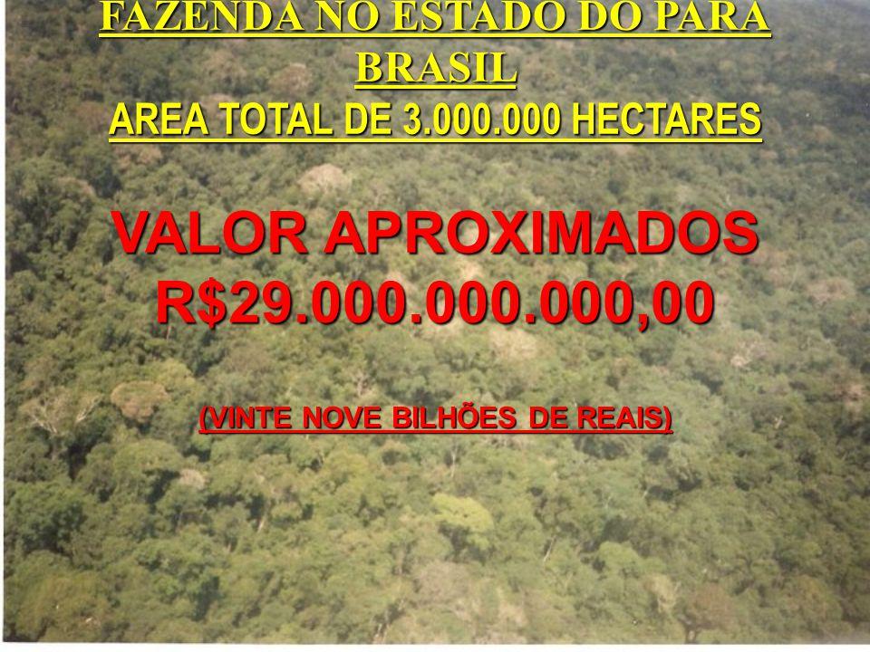 FAZENDA NO ESTADO DO PARÁ BRASIL AREA TOTAL DE 3.000.000 HECTARES VALOR APROXIMADOS R$29.000.000.000,00 (VINTE NOVE BILHÕES DE REAIS)