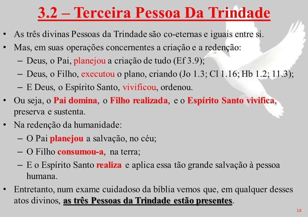 3.2 – Terceira Pessoa Da Trindade As três divinas Pessoas da Trindade são co-eternas e iguais entre si. Mas, em suas operações concernentes a criação