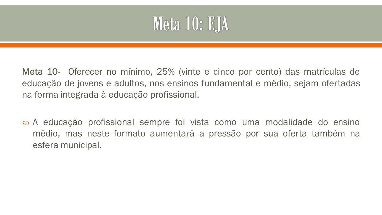 Meta 10- Oferecer no mínimo, 25% (vinte e cinco por cento) das matrículas de educação de jovens e adultos, nos ensinos fundamental e médio, sejam ofer