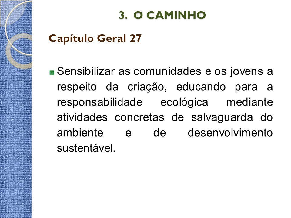 3. O CAMINHO 3. O CAMINHO Capítulo Geral 27 Sensibilizar as comunidades e os jovens a respeito da criação, educando para a responsabilidade ecológica