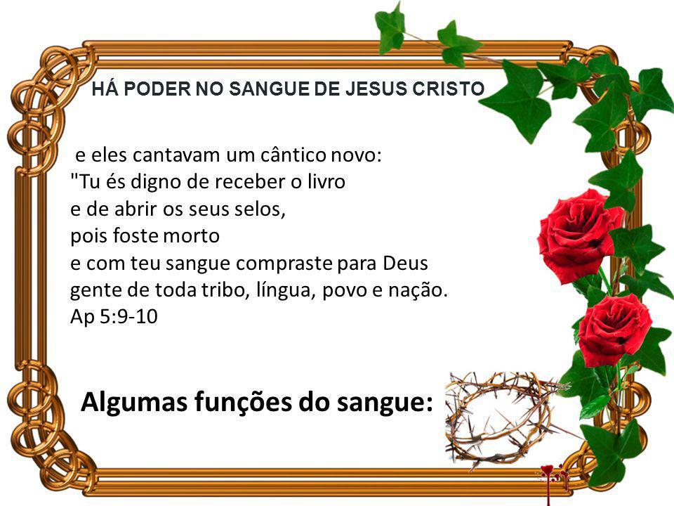 Que hoje haja uma transfusão de sangue na sua vida, que o sangue do pecado (Adão) seja eliminado e que o sangue de Jesus seja introduzido em você.