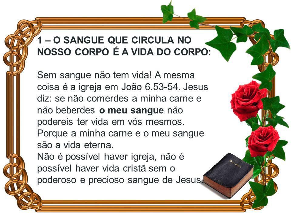 1 – O SANGUE QUE CIRCULA NO NOSSO CORPO É A VIDA DO CORPO: Sem sangue não tem vida.