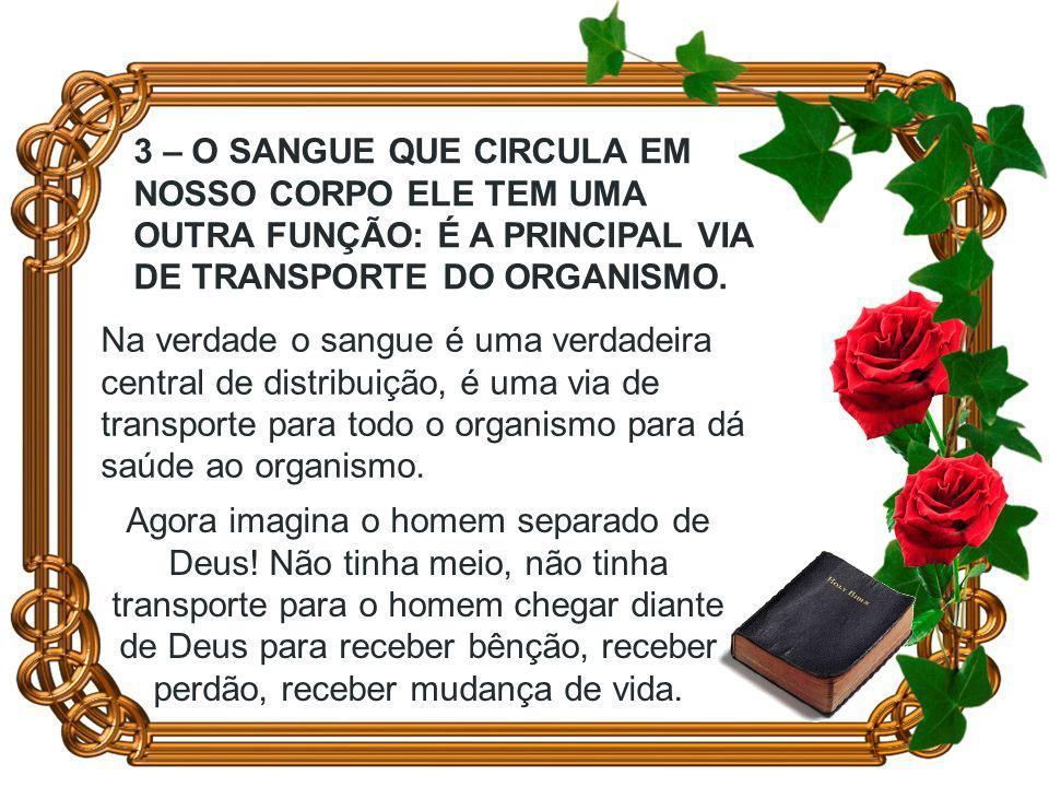 3 – O SANGUE QUE CIRCULA EM NOSSO CORPO ELE TEM UMA OUTRA FUNÇÃO: É A PRINCIPAL VIA DE TRANSPORTE DO ORGANISMO.