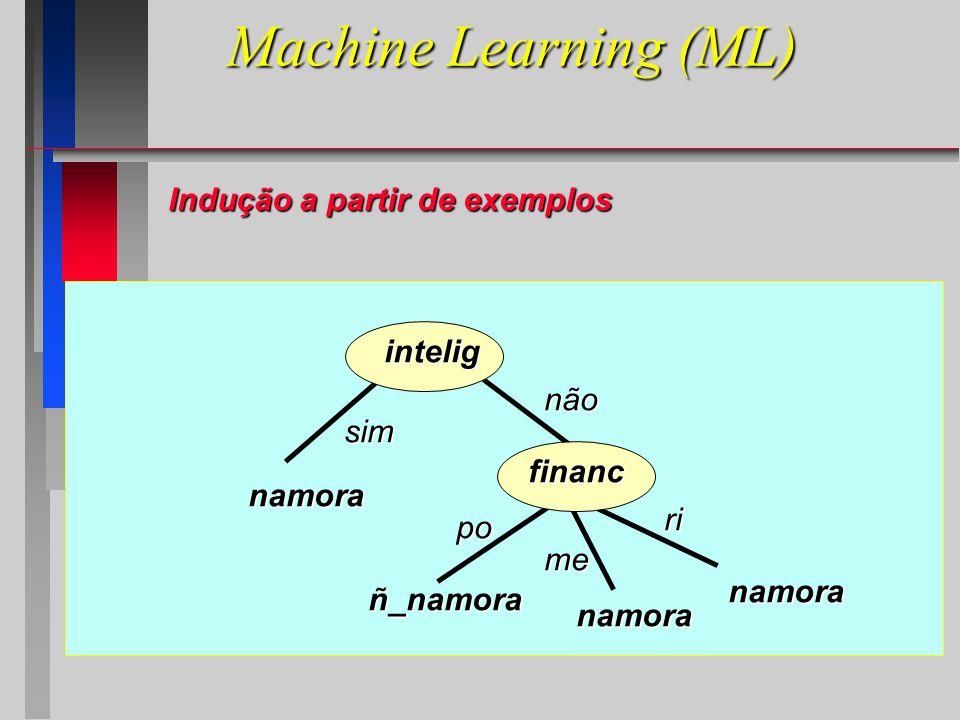 Machine Learning (ML) intelig financ namora sim não po me ri ñ_namora namora namora Indução a partir de exemplos