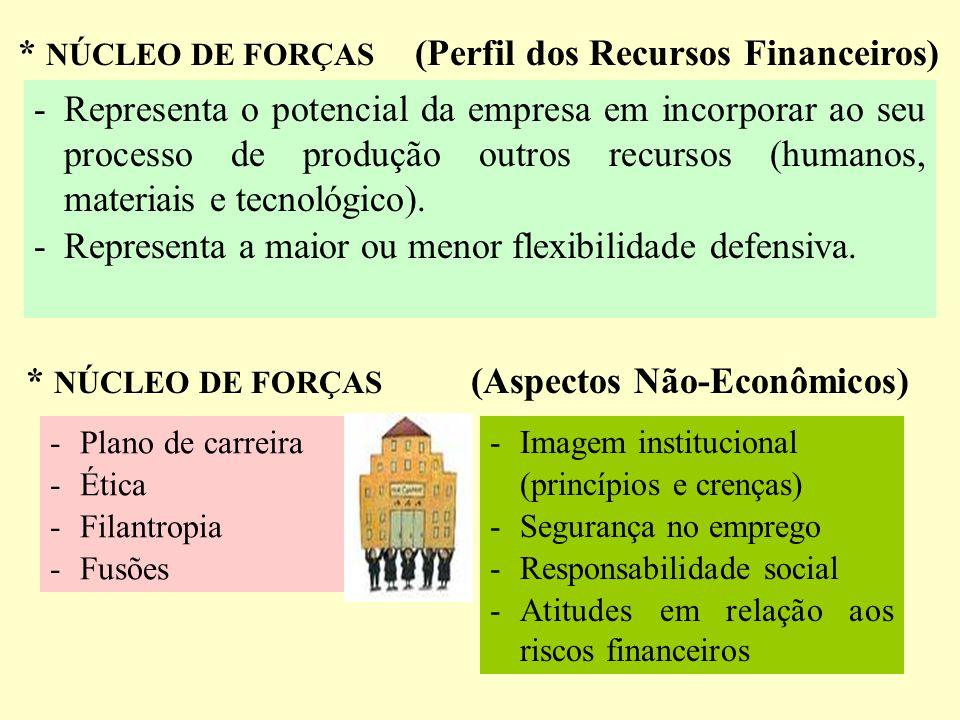 * NÚCLEO DE FORÇAS (Perfil dos Recursos Humanos) Ativo Vital - Capacidade de pensar, agir e produzir - Turnover - Mobilidade funcional - Plano de carr