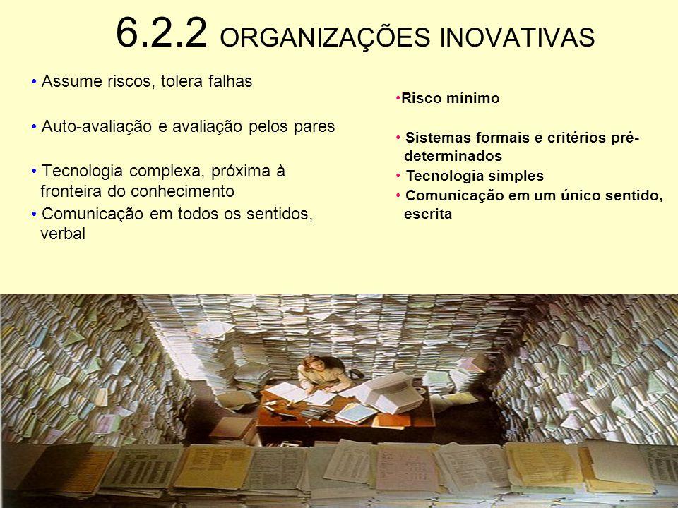 6.2.1 ORGANIZAÇÕES INOVATIVAS Voltada para o ambiente externo e para o longo prazo Não repetitiva e criativa Profissionais altamente capacitados Auto-