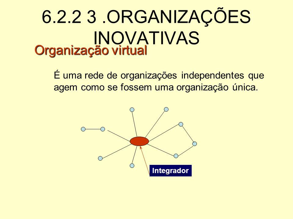 6.2.2 ORGANIZAÇÕES INOVATIVAS Assume riscos, tolera falhas Auto-avaliação e avaliação pelos pares Tecnologia complexa, próxima à fronteira do conhecim