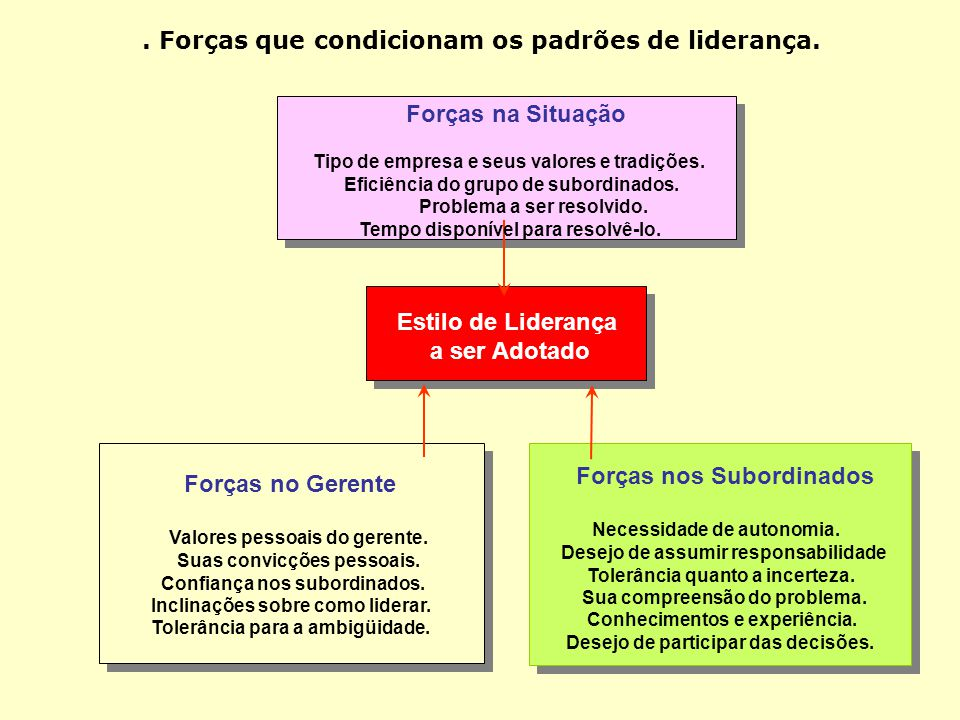 Autocrática O líder fixa as diretrizes, sem qualquer participação do grupo O líder determina as providência para execução das tarefas, na medida em qu