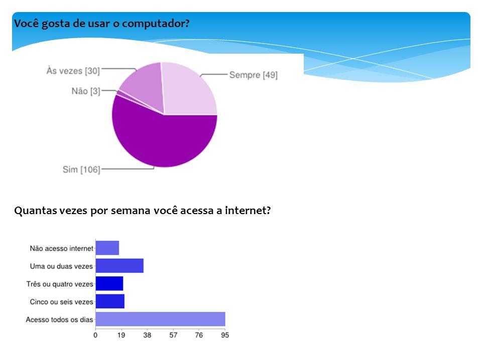 Você gosta de usar o computador? Quantas vezes por semana você acessa a internet?
