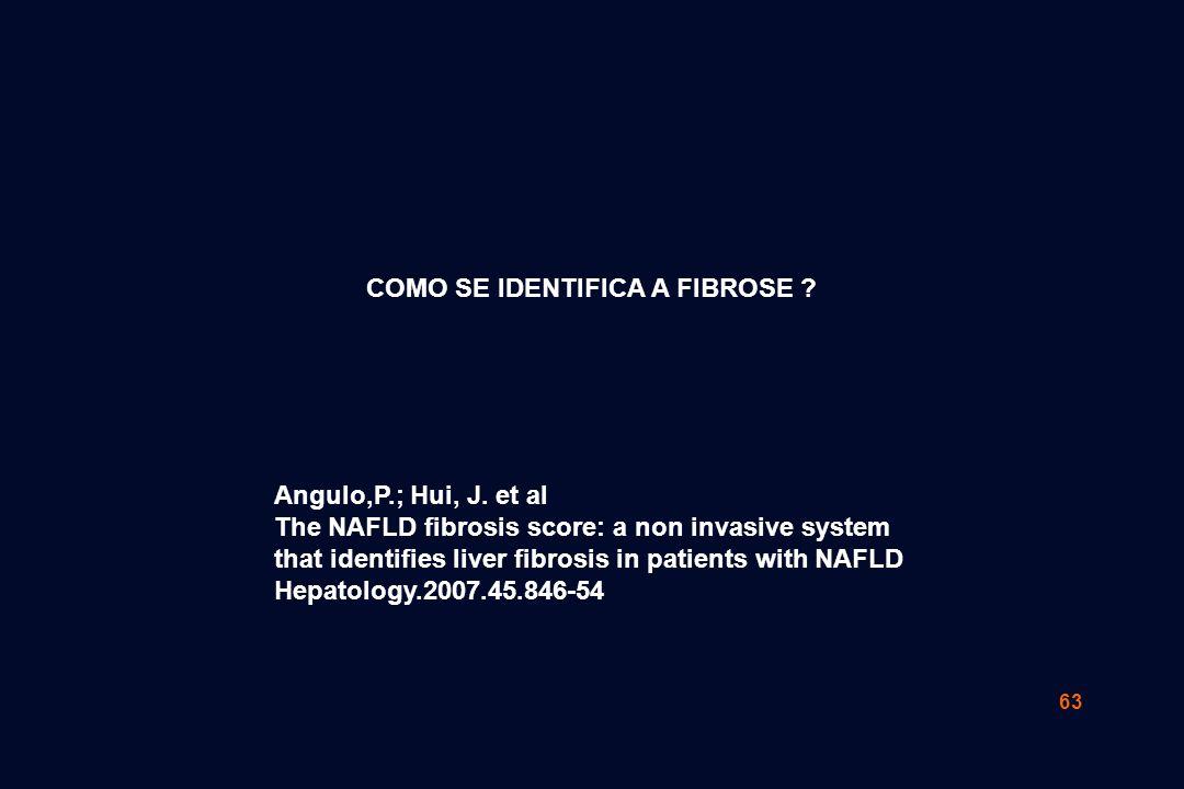 63 COMO SE IDENTIFICA A FIBROSE ? Angulo,P.; Hui, J. et al The NAFLD fibrosis score: a non invasive system that identifies liver fibrosis in patients