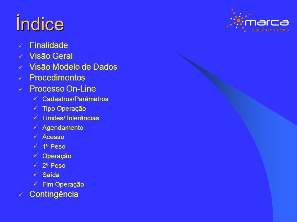 Procedimentos – Agendamento Transação WEB Enviado pelo Importador, antes do acesso, obrigatório para entrar no Porto e pesar, previsto para ser digitado pelo importador na aquisição do novo Banco de Dados.