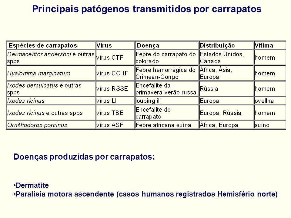 Doenças produzidas por carrapatos: Dermatite Paralisia motora ascendente (casos humanos registrados Hemisfério norte)