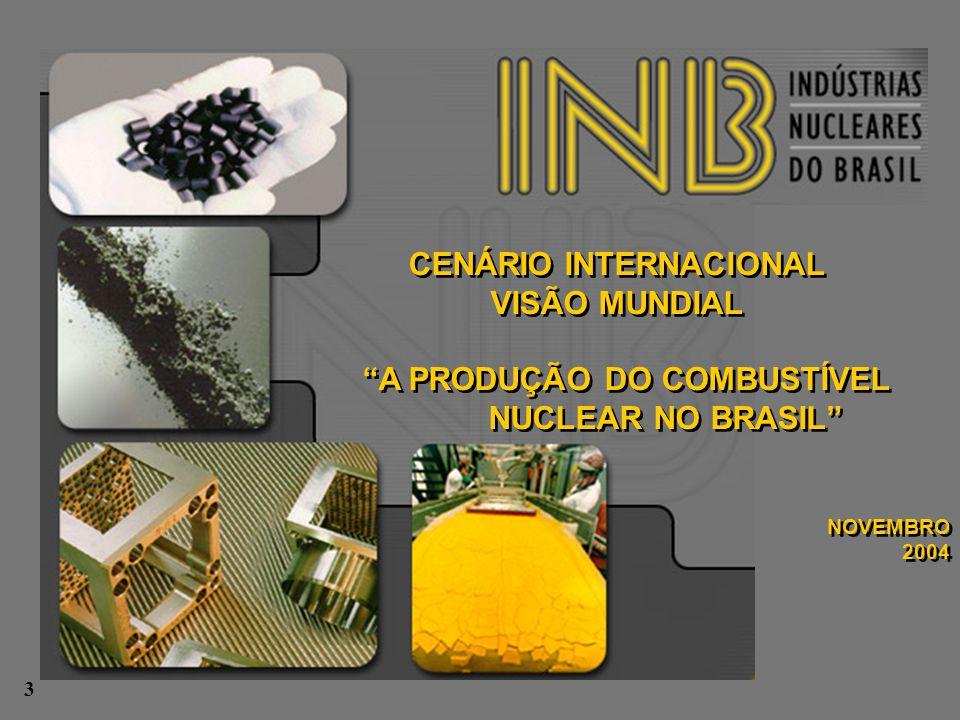 """CENÁRIO INTERNACIONAL VISÃO MUNDIAL """"A PRODUÇÃO DO COMBUSTÍVEL NUCLEAR NO BRASIL"""" NOVEMBRO 2004 CENÁRIO INTERNACIONAL VISÃO MUNDIAL """"A PRODUÇÃO DO COM"""