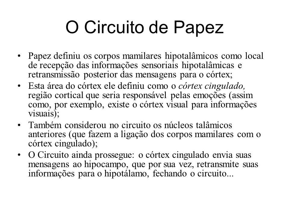O Circuito de Papez Papez definiu os corpos mamilares hipotalâmicos como local de recepção das informações sensoriais hipotalâmicas e retransmissão po