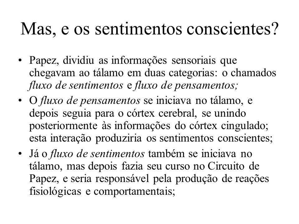 Mas, e os sentimentos conscientes? Papez, dividiu as informações sensoriais que chegavam ao tálamo em duas categorias: o chamados fluxo de sentimentos