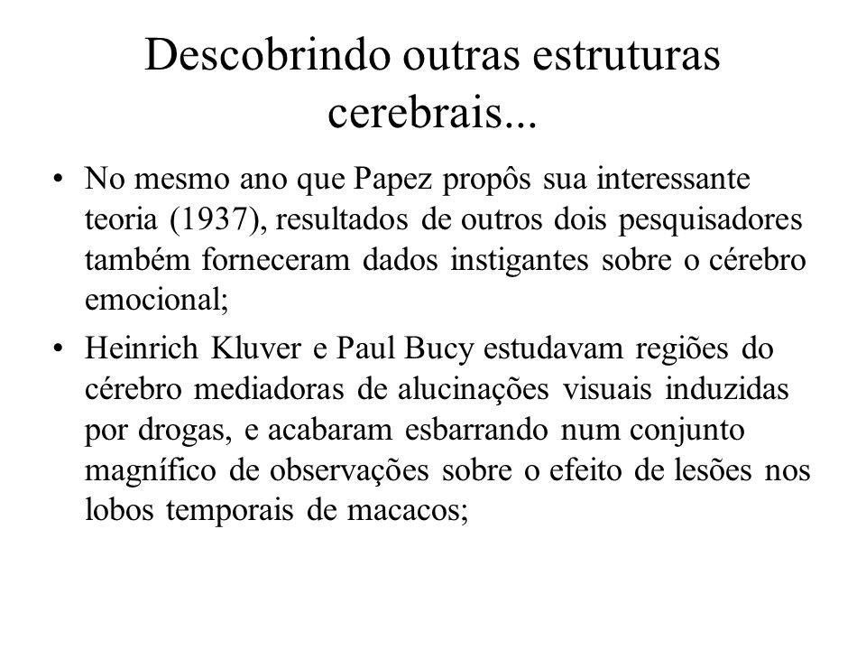 Descobrindo outras estruturas cerebrais... No mesmo ano que Papez propôs sua interessante teoria (1937), resultados de outros dois pesquisadores també
