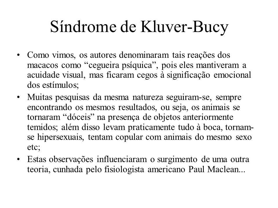 """Síndrome de Kluver-Bucy Como vimos, os autores denominaram tais reações dos macacos como """"cegueira psíquica"""", pois eles mantiveram a acuidade visual,"""