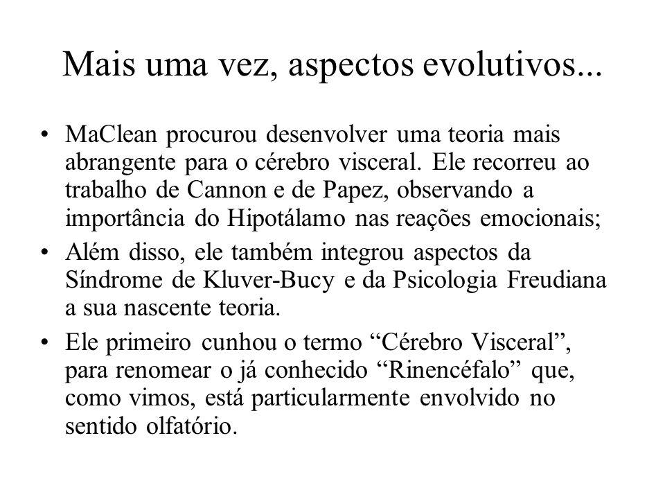 Mais uma vez, aspectos evolutivos... MaClean procurou desenvolver uma teoria mais abrangente para o cérebro visceral. Ele recorreu ao trabalho de Cann