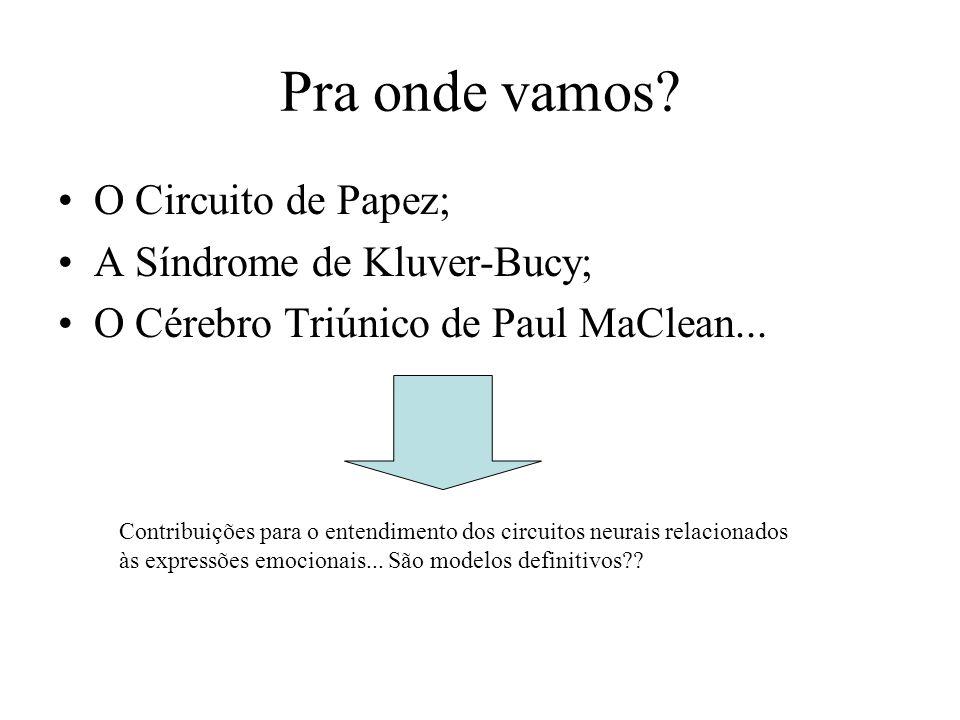 Pra onde vamos? O Circuito de Papez; A Síndrome de Kluver-Bucy; O Cérebro Triúnico de Paul MaClean... Contribuições para o entendimento dos circuitos