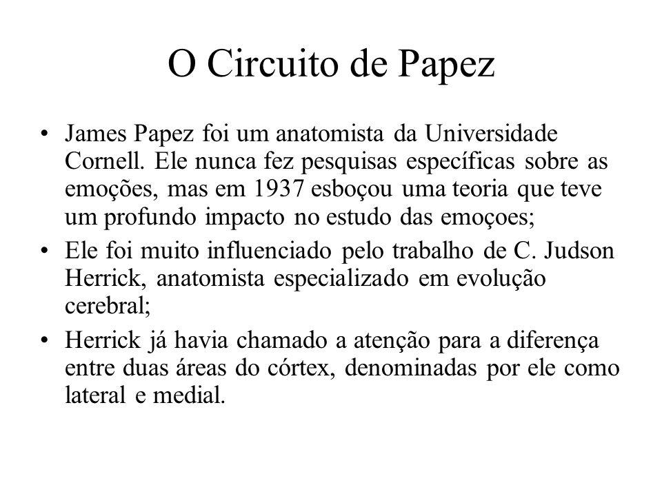 O Circuito de Papez James Papez foi um anatomista da Universidade Cornell. Ele nunca fez pesquisas específicas sobre as emoções, mas em 1937 esboçou u