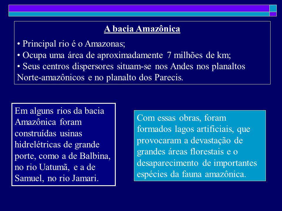 A bacia Amazônica Principal rio é o Amazonas; Ocupa uma área de aproximadamente 7 milhões de km; Seus centros dispersores situam-se nos Andes nos plan