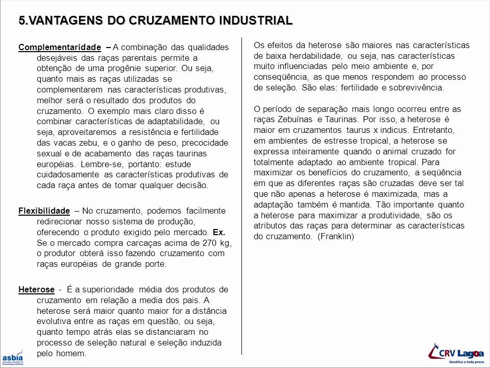 11.ASPECTOS PARA TOMADA DE DECISÃO SOBRE O TIPO DE CRUZAMENTO A SER ADOTADO (Zadra, 2003) 1.