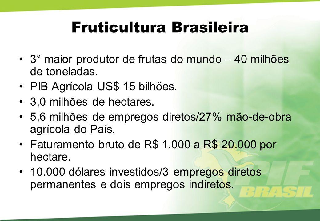 Balança Comercial – Fruticultura 2005 Exportação de frutas: 897,3 mil toneladas / US$ 676,8 milhões.