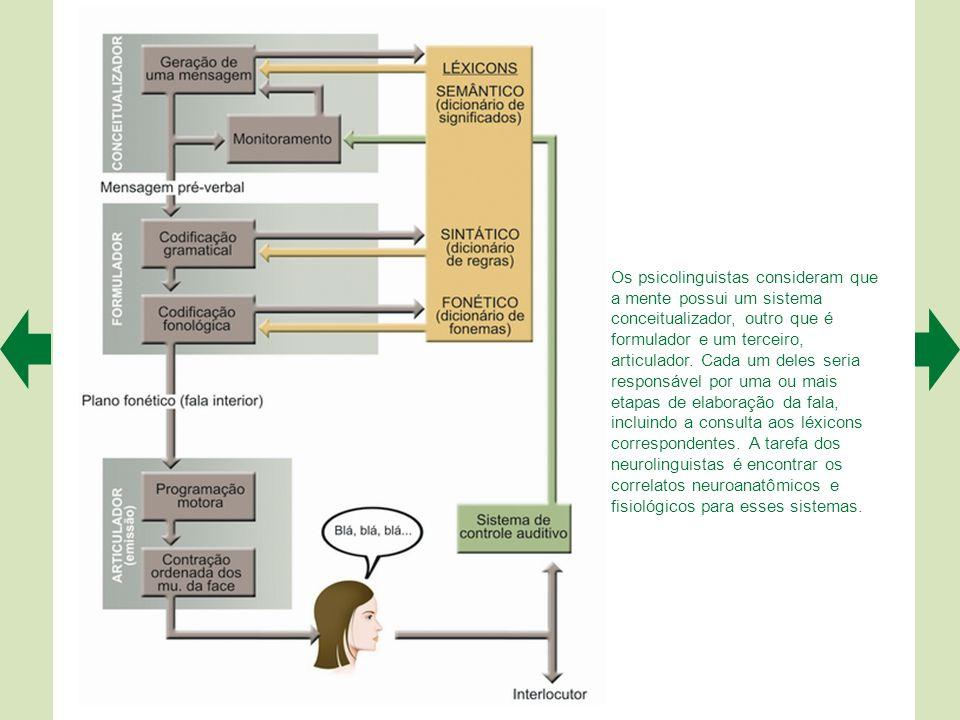Os psicolinguistas consideram que a mente possui um sistema conceitualizador, outro que é formulador e um terceiro, articulador.