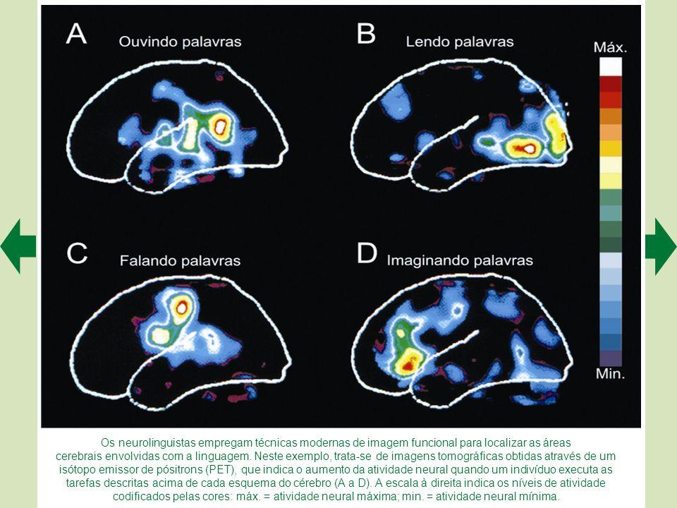 Os neurolinguistas empregam técnicas modernas de imagem funcional para localizar as áreas cerebrais envolvidas com a linguagem.