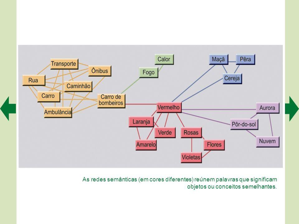 As redes semânticas (em cores diferentes) reúnem palavras que significam objetos ou conceitos semelhantes.