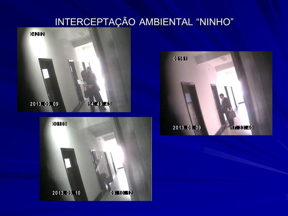 """INTERCEPTAÇÃO AMBIENTAL """"NINHO"""""""