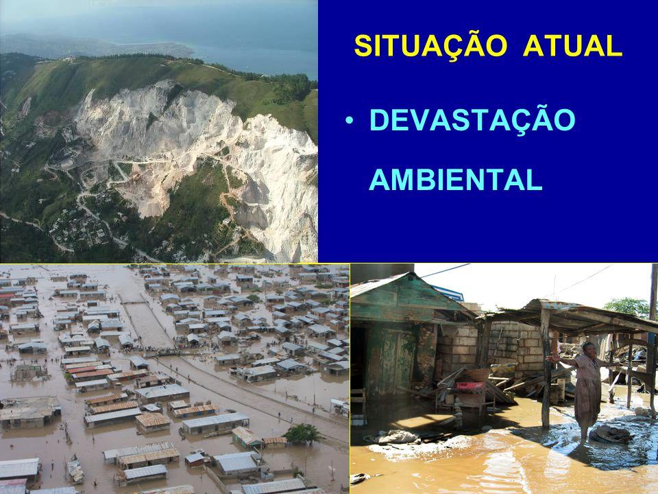 DEVASTAÇÃO AMBIENTAL SITUAÇÃO ATUAL