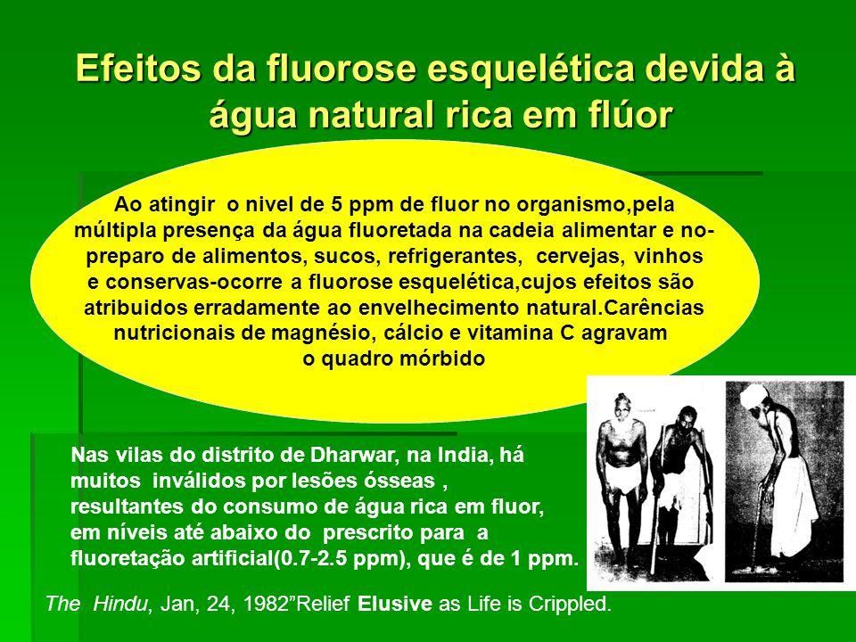 Efeitos da fluorose esquelética devida à água natural rica em flúor Ao atingir o nivel de 5 ppm de fluor no organismo,pela múltipla presença da água fluoretada na cadeia alimentar e no- preparo de alimentos, sucos, refrigerantes, cervejas, vinhos e conservas-ocorre a fluorose esquelética,cujos efeitos são atribuidos erradamente ao envelhecimento natural.Carências nutricionais de magnésio, cálcio e vitamina C agravam o quadro mórbido Nas vilas do distrito de Dharwar, na India, há muitos inválidos por lesões ósseas, resultantes do consumo de água rica em fluor, em níveis até abaixo do prescrito para a fluoretação artificial(0.7-2.5 ppm), que é de 1 ppm.