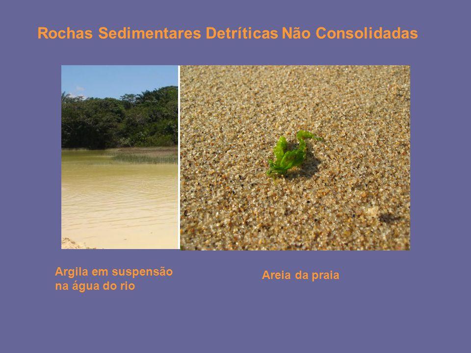 Rochas Sedimentares Detríticas Não Consolidadas Argila em suspensão na água do rio Areia da praia