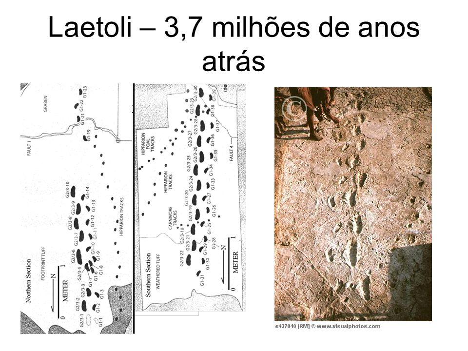 Laetoli – 3,7 milhões de anos atrás