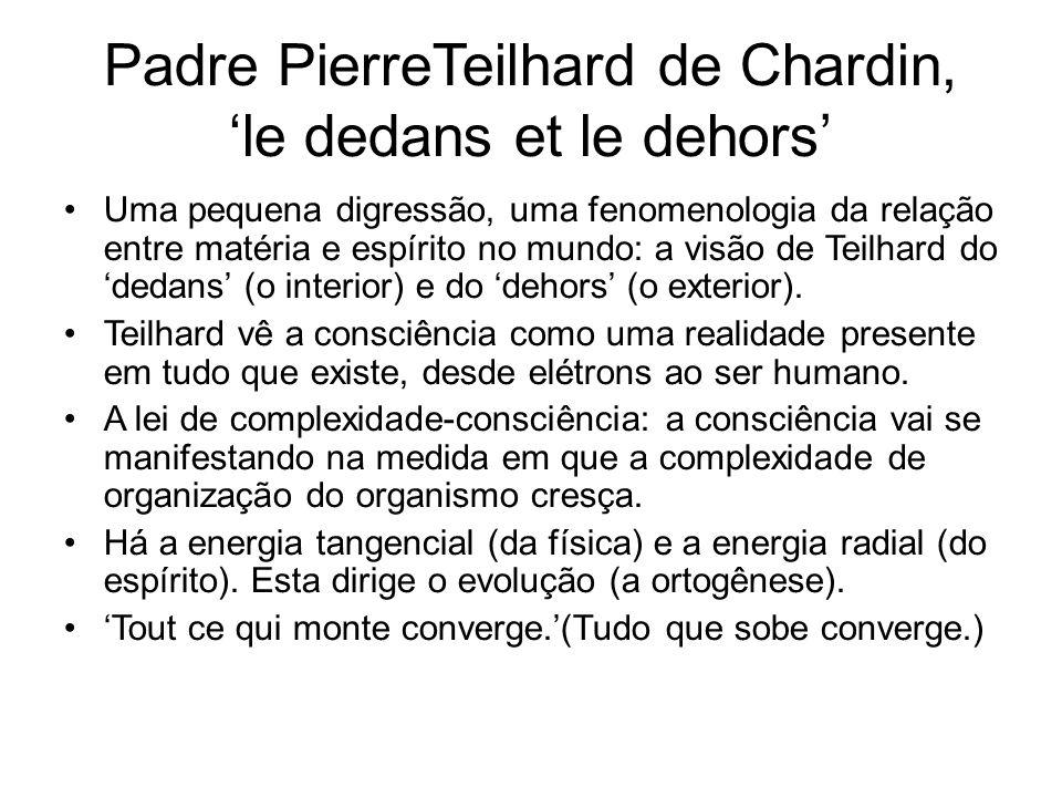 Padre PierreTeilhard de Chardin, 'le dedans et le dehors' Uma pequena digressão, uma fenomenologia da relação entre matéria e espírito no mundo: a visão de Teilhard do 'dedans' (o interior) e do 'dehors' (o exterior).