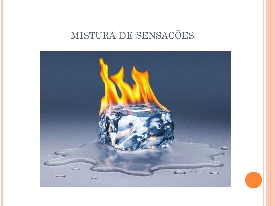 MISTURA DE SENSAÇÕES