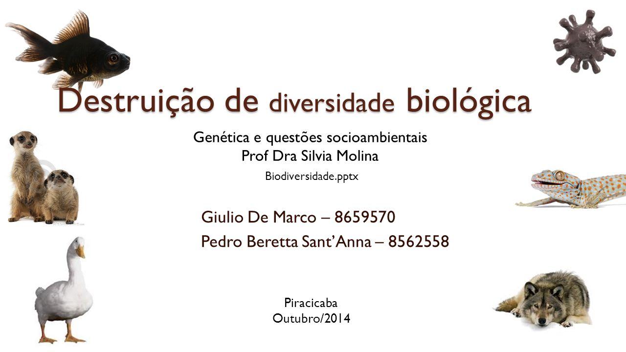 Giulio De Marco – 8659570 Pedro Beretta Sant'Anna – 8562558 Genética e questões socioambientais Prof Dra Silvia Molina Piracicaba Outubro/2014 Biodiversidade.pptx Destruição de diversidade biológica