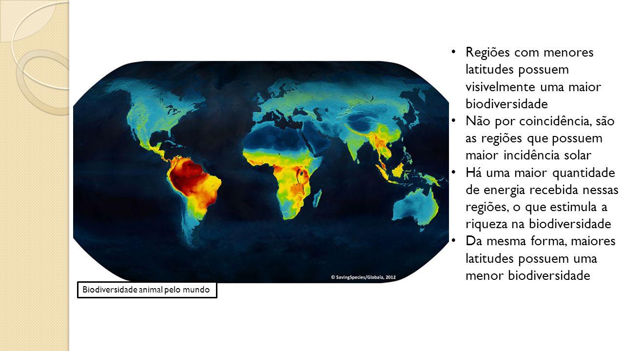 Biodiversidade animal pelo mundo Regiões com menores latitudes possuem visivelmente uma maior biodiversidade Não por coincidência, são as regiões que possuem maior incidência solar Há uma maior quantidade de energia recebida nessas regiões, o que estimula a riqueza na biodiversidade Da mesma forma, maiores latitudes possuem uma menor biodiversidade