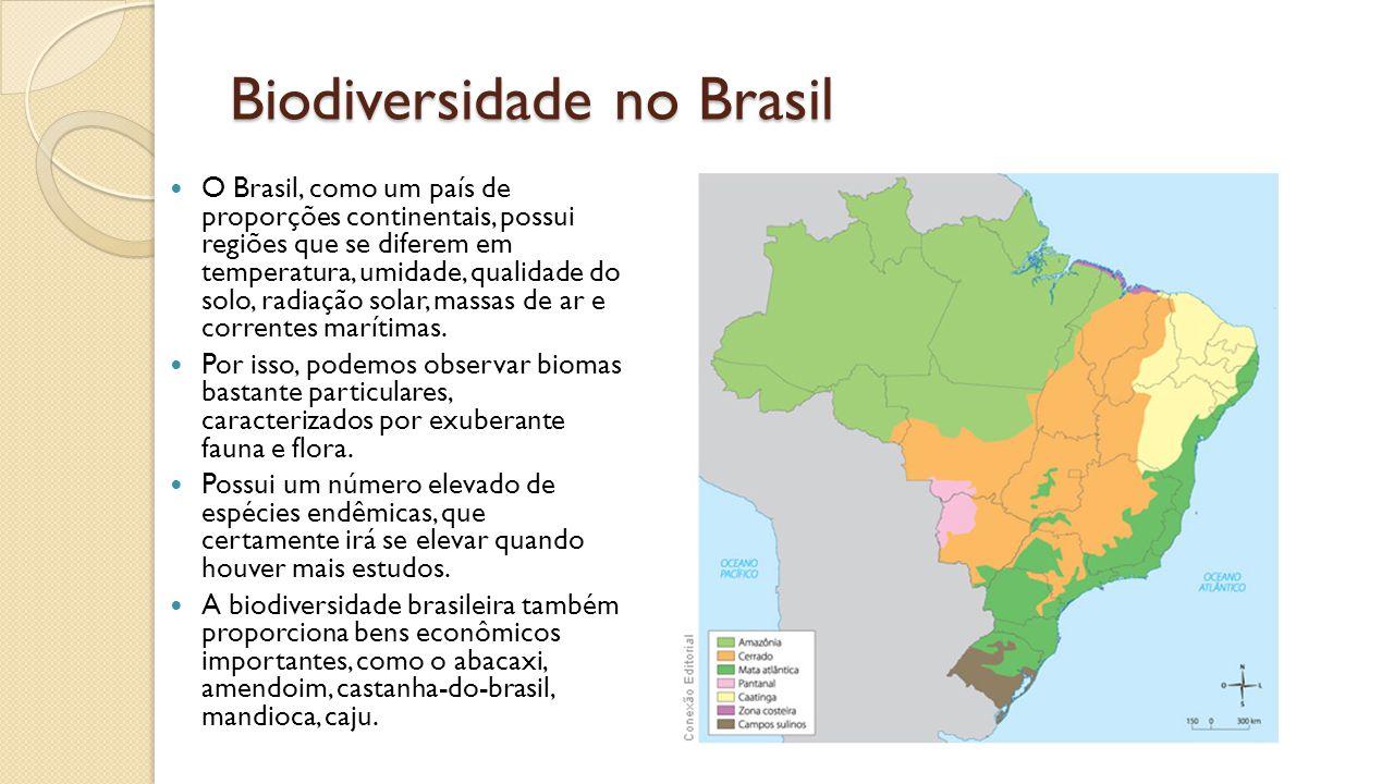 Biodiversidade no Brasil O Brasil, como um país de proporções continentais, possui regiões que se diferem em temperatura, umidade, qualidade do solo, radiação solar, massas de ar e correntes marítimas.