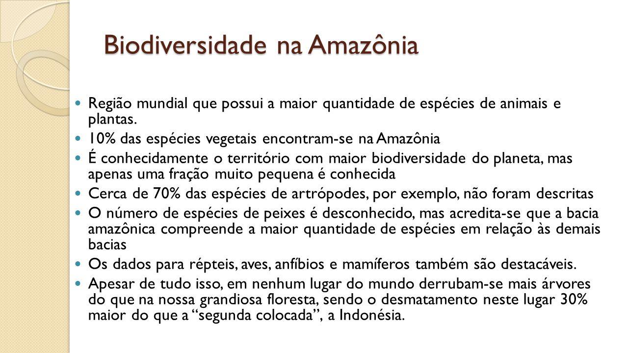 Biodiversidade na Amazônia Região mundial que possui a maior quantidade de espécies de animais e plantas.