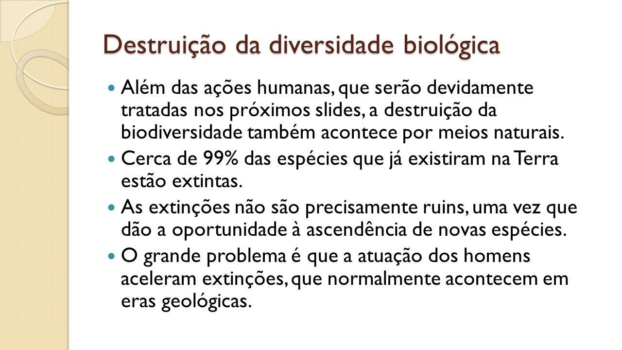 Destruição da diversidade biológica Além das ações humanas, que serão devidamente tratadas nos próximos slides, a destruição da biodiversidade também acontece por meios naturais.