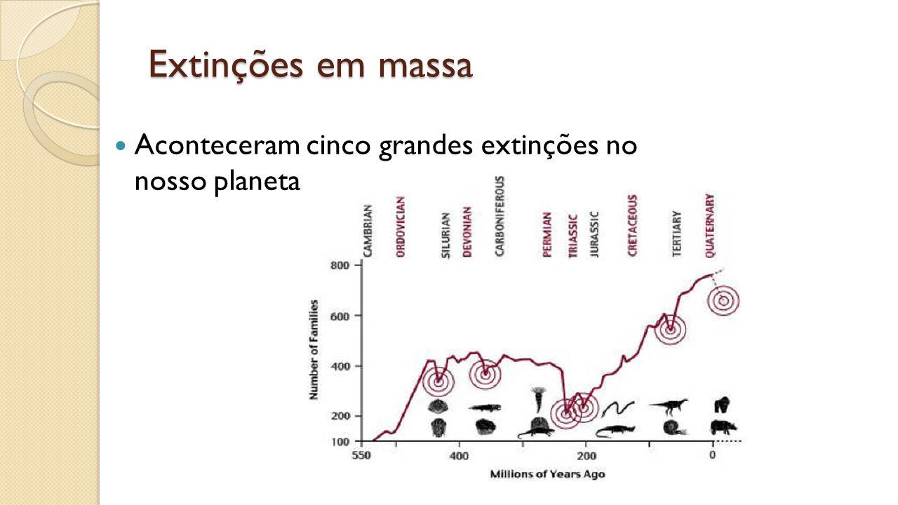 Extinções em massa Aconteceram cinco grandes extinções no nosso planeta